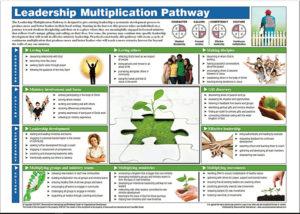 4C LEADERSHIP-MULT-PATHWAY-CS