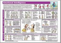 Emotional Intelligence CS